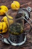 Accesorios al té de la fruta del té en estilo del vintage Imagen de archivo