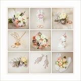 Accesorios de la boda del ` s de la novia Foto de archivo libre de regalías