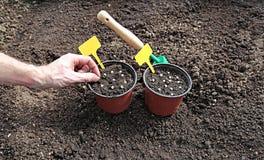 Accesorios de la horticultura en gardenbed fotos de archivo libres de regalías