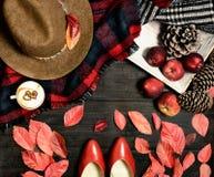 Accesorios de la mirada del otoño planos Foto de archivo