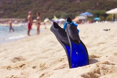 Accesorios de la natación de la playa del verano Imagen de archivo