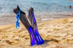 Accesorios de la natación de la playa del verano Imagen de archivo libre de regalías