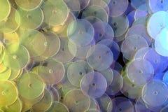 Accesorios decorativos para coser y el bordado Forma redonda de las lentejuelas brillantes Fotos de archivo