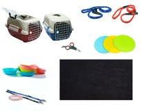 Accesorios del animal doméstico en fondo blanco aislado foto de archivo libre de regalías