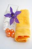 Accesorios del baño y productos de belleza Imagen de archivo libre de regalías