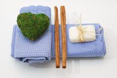 Accesorios del BALNEARIO para la salud o relajarse Foto de archivo libre de regalías