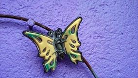 Accesorios del clip del perno de pelo de la mariposa Imágenes de archivo libres de regalías