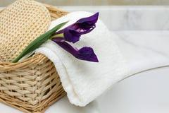 Accesorios del cuarto de baño Fotos de archivo libres de regalías