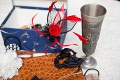 Accesorios del pelo de Multicoour, taza del metal y pulsera con el tigre Fotografía de archivo libre de regalías