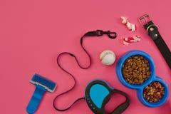Accesorios del perro en fondo rosado Visión superior Concepto de los animales domésticos y de los animales Imagen de archivo libre de regalías