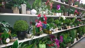 Accesorios florales hermosos en la venta de los estantes Foto de archivo libre de regalías