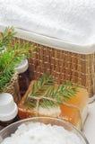 Accesorios para el baño Imagen de archivo libre de regalías