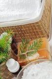 Accesorios para el baño en el fondo de madera blanco Foto de archivo libre de regalías