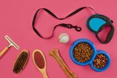 Accesorios para la preparación del perro Peines y cepillos para los perros Visión superior Foto de archivo libre de regalías