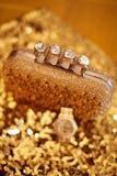 Accesorios para mujer de oro de la moda Reloj y monedero de lujo, Fotos de archivo
