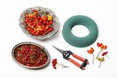 Accesorios profesionales de los floristas: plantas del anillo y del otoño Fotografía de archivo libre de regalías