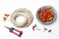 Accesorios profesionales de los floristas: plantas del anillo y del otoño Imagenes de archivo