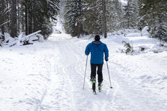 Accesorios que caminan del nordic de la montaña del invierno Fotografía de archivo