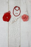 Accesorios rojos para los ladys Foto de archivo