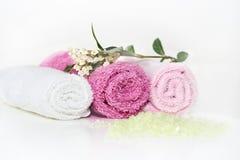 Accesorios rosados del baño Foto de archivo libre de regalías