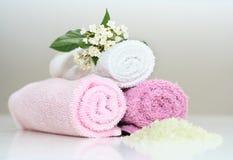 Accesorios rosados del baño Foto de archivo