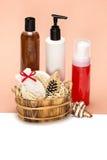 Accesorios y productos del cosmético para el cuidado del cuerpo Imagen de archivo