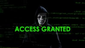 Access granted text on screen, professional hacker copying secret information. Stock photo royalty free stock photography