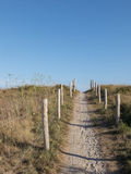 Access path to the beach dunes. Wood bollards delimit the walkable area. Cloudless blue sky Royalty Free Stock Photos