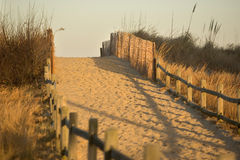 access stranden Royaltyfri Foto