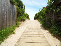 Access to the beach. Boardwalk through the dunes to the beach of the Baltic Sea Stock Photography