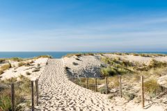 Cap Ferret, Arcachon Bay, France. Access to the beach. Access to the beach of the dunes, in the Cap Ferret, on the Atlantic Ocean Royalty Free Stock Photography