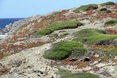Access to Presili cove near the Far de Favaritx, Minorca, Balear Royalty Free Stock Photo
