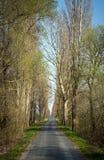 access vägen Royaltyfri Fotografi