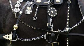 Accessoires de cheval Photographie stock libre de droits