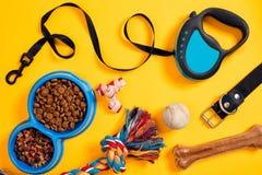 Accessoires de chien sur le fond jaune Vue supérieure Concept d'animaux familiers et d'animaux Photo libre de droits
