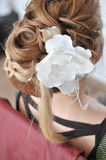 Accessoires nuptiales Image stock
