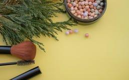 Accessori cosmetici Spazzoli, arrossisca, rossetto, rami verdi su un fondo giallo fotografia stock libera da diritti