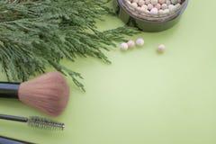 Accessori cosmetici Spazzoli, arrossisca, rossetto, rami verdi su un fondo verde immagini stock libere da diritti