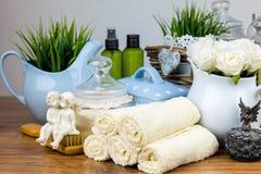 Accessori del bagno elementi dell'igiene personali Immagine Stock Libera da Diritti