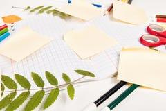 Accessori dell'allievo e dell'ufficio su un bianco Fotografia Stock Libera da Diritti