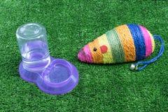 Accessori dell'animale domestico per il gatto su erba Immagini Stock