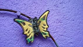 Accessori della clip del perno di capelli della farfalla Immagini Stock Libere da Diritti