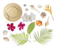 Accessori della spiaggia per il vostri propri progettazione: cappello, rami della palma, uccello Fotografia Stock Libera da Diritti