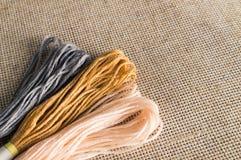 Accessori per gli hobby: colori differenti del filo per ricamo Fotografie Stock Libere da Diritti