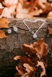 Accessori per la sposa contro lo sfondo del tronco di albero e del fogliame di autunno illustrazione Concetto di nozze di autunno Immagine Stock