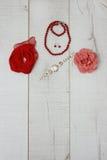 Accessori rossi per i ladys Fotografia Stock