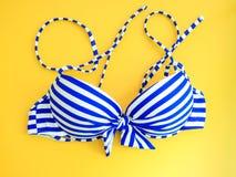 Accessorie plano del paño del verano de la muchacha de la endecha con el bikini atractivo azul en y Foto de archivo libre de regalías