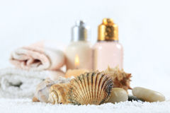 Accessories for a bath Stock Photography