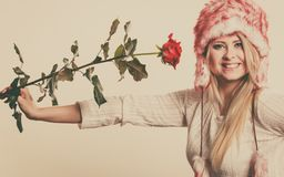 Woman in winter furry hat holding red rose. Accessories and clothes for cold days, fashion, romantic gestures concept. Woman in winter furry hat holding red rose Stock Images
