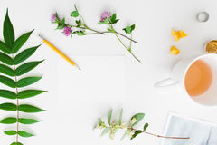 Accessories for handmade craft flat lay. Top view on artisan workplace with green leaves with flowers and cup of tea, free space. Art, hobby, craft concept Stock Image